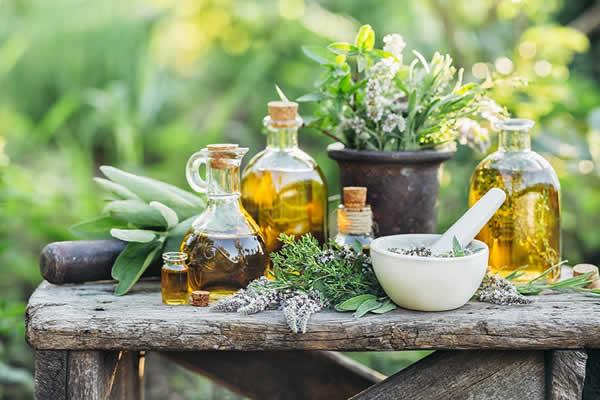 بررسی کلی گیاهان دارویی