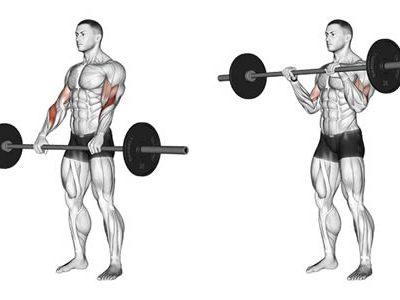 ناحیه فشار عضله در حرکت جلو بازو هالتر دست برعکس