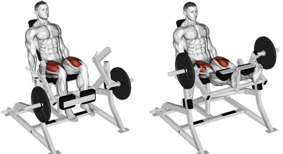 ناحیه فشار عضله در حرکت جلو پا دستگاه