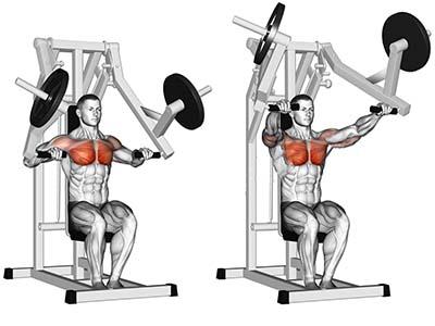 ناحیه فشار عضله در حرکت پرس سینه دستگاه