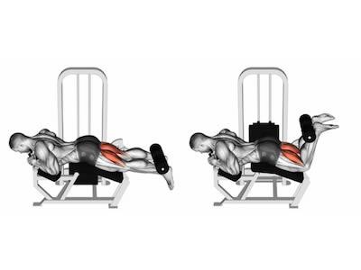 ناحیه فشار عضله در حرکت پشت پا دستگاه خوابیده