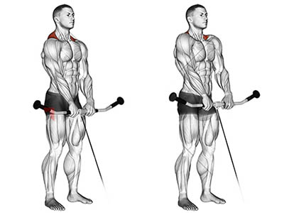 ناحیه فشار عضله در حرکت شراگ سیم کش از جلو