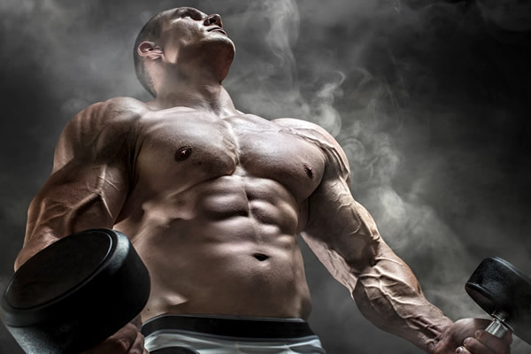 سازگاری عضله با تمرین