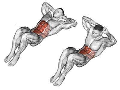 عضلات درگیر کرانچ خوابیده
