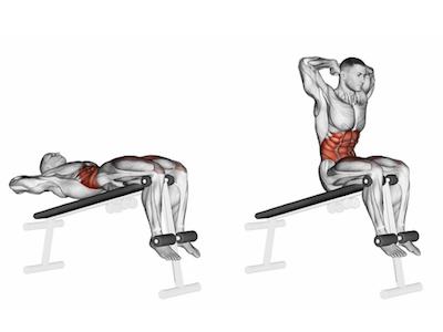 عضلات درگیر دراز نشست روی میز شیبدار