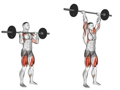 عضلات درگیر سرشانه هالتر از جلو