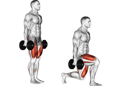 عضلات درگیر لانگز دمبل رو به عقب تناوبی