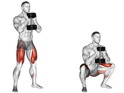 عضلات درگیر اسکوات گابلت